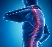 Ostéopathe et posture
